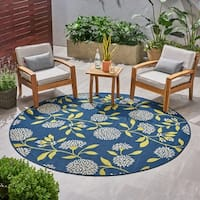Viola Indoor/ Outdoor Floral Area Rug by Christopher Knight Home - 5 x 8