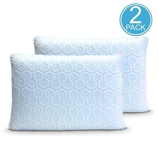 Hydrologie 2 Pack Zipper Covers for Sleeping Cool with Down Alternative Memory Foam Feather Pillows