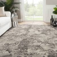 Kali Hand-Knotted Abstract Gray Area Rug - 2' x 3'