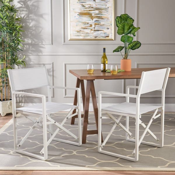 Shop Duncan Indoor Mesh and Aluminum Director Chairs (Set of ...
