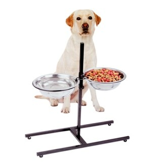 Adjustable Metal Feeder With 2 Stainless Steel Pet Dog Bowl