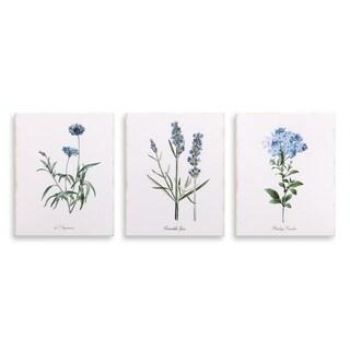 8x10 Lavender Botanical Drawing, Set of 3 Canvas Art - Purple