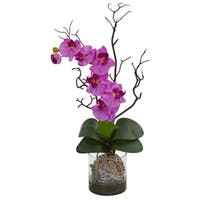Phalaenopsis Orchid Artificial Arrangement in Vase