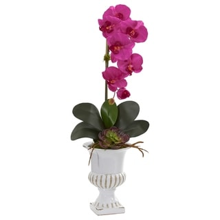 Phalaenopsis Orchid and Succulent Artificial Arrangement in Urn