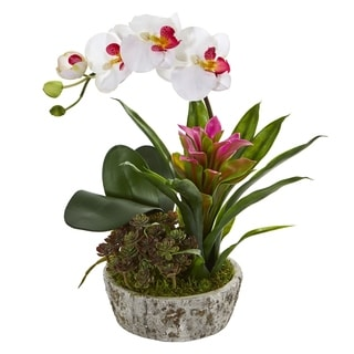Orchid, Bromeliad and Succulent Artificial Arrangement in Planter