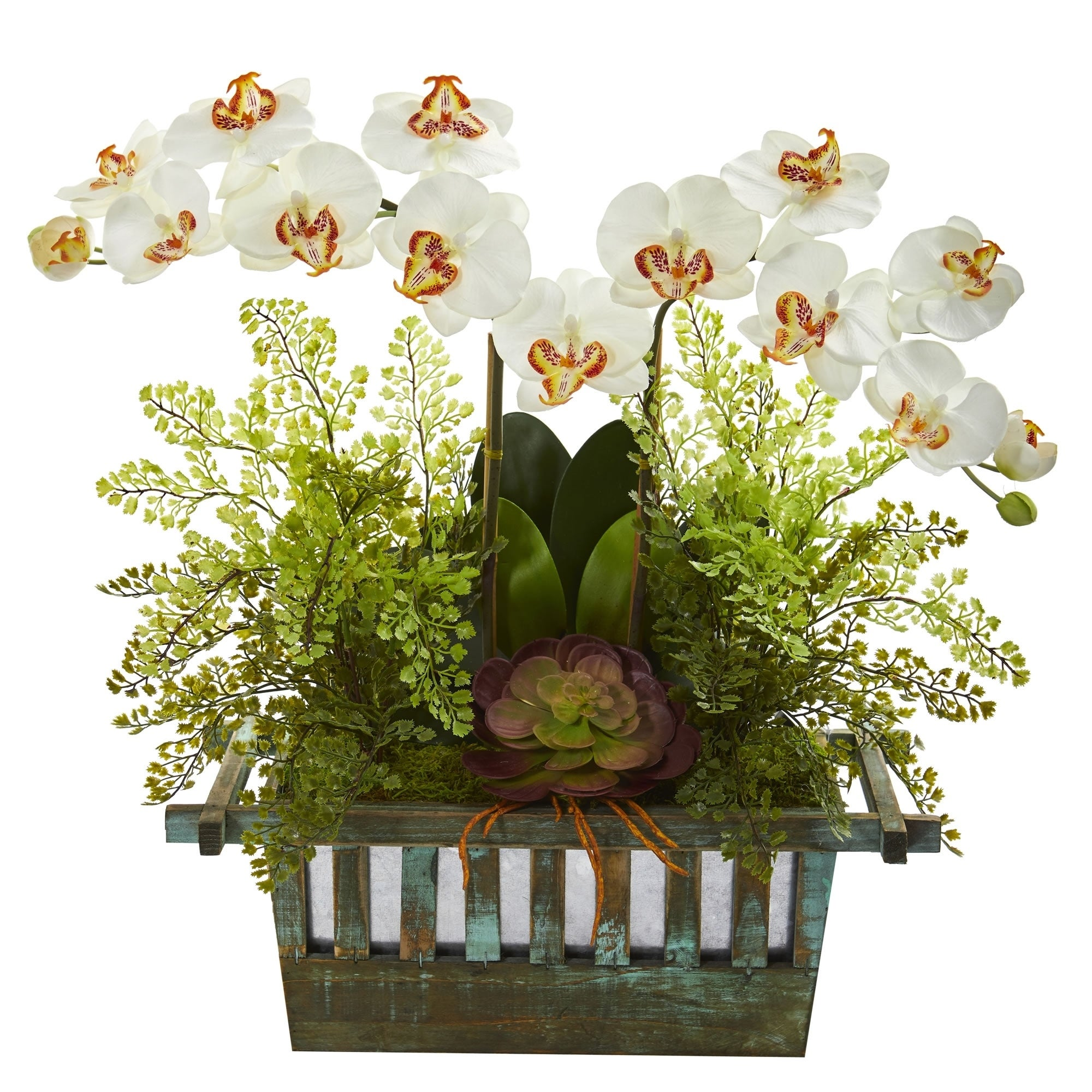 Orchid Succulent And Maiden Hair Artificial Arrangement On Sale Overstock 22348985