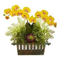 Orchid, Succulent and Maiden Hair Artificial Arrangement