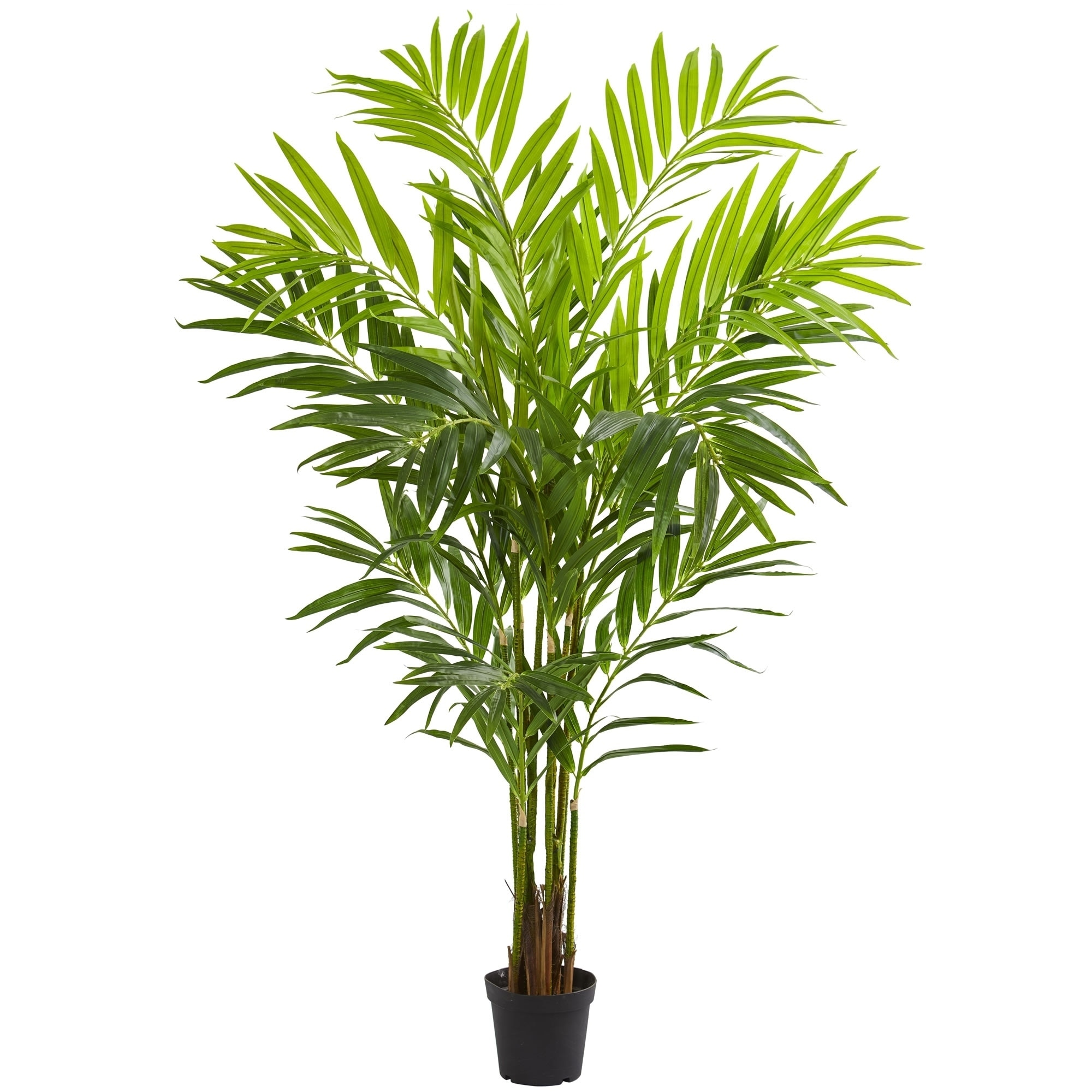Golden Cane Palm Tree Artificial Plant w// 2 Trunks and Hundreds of Leaves 4 ft
