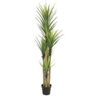 Dracaena Artificial Plant
