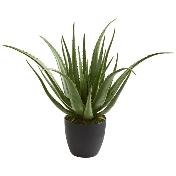 Aloe Artificial Plant