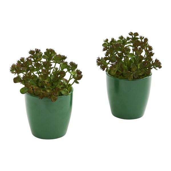 Sedum Succulent Artificial Plant in Green Planter (Set of 2)