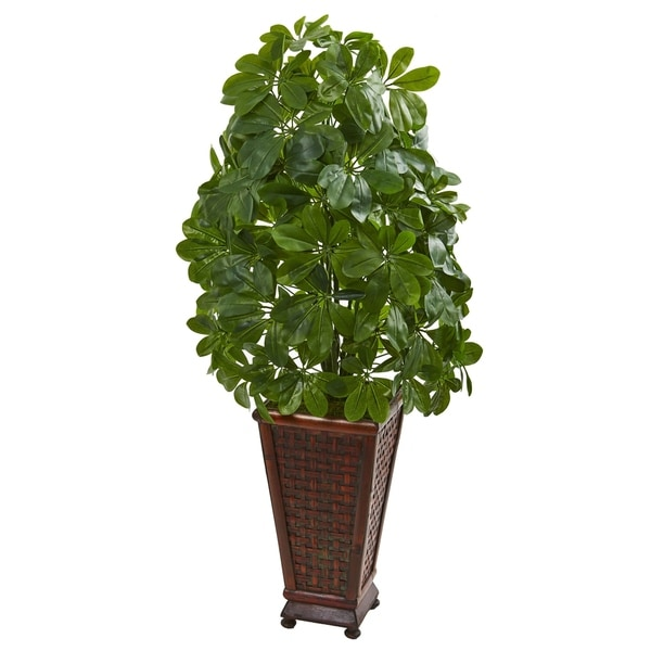 Schefflera Artificial Plant in Decorative Planter (Real Touch)