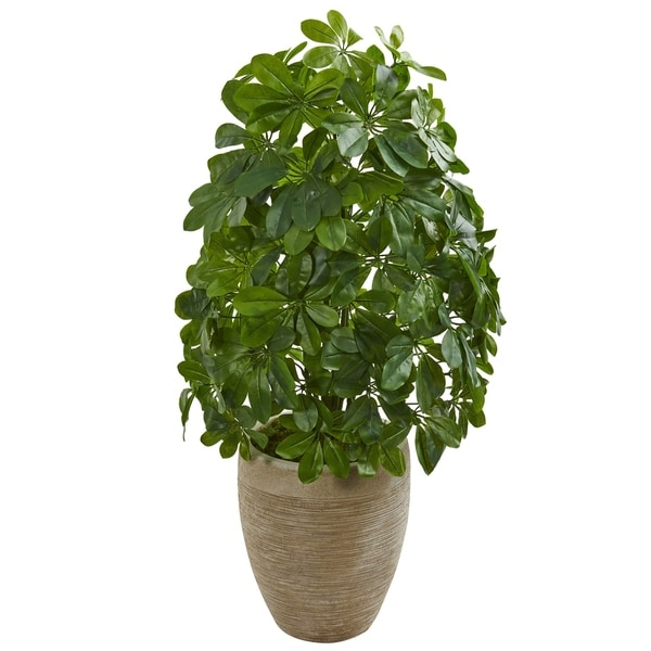 Schefflera Artificial Plant in Sand Colored Planter (Real Touch)