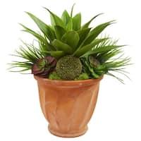 Succulent Garden Artificial Plant in Terra Cotta Planter