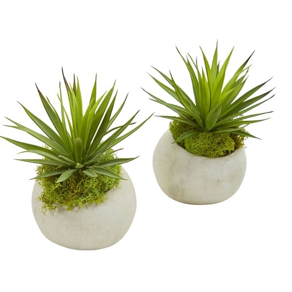 Spiky Agave Artificial Plant in Planter (Set of 2)