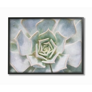 The Stupell Home Decor Collection Succulent Plant Gentle Morning Dew Painting, Framed Giclee, 16 x 1.5 x 20, Made in USA