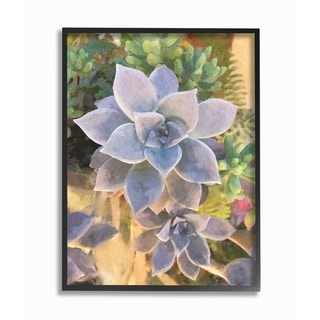 The Stupell Home Decor Collection Succulent Plant Desert Party Painting, Framed Giclee, 16 x 1.5 x 20, Made in USA - Multi-color