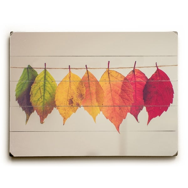 Leaf Spectrum - Multi Planked Wood Wall Decor by OBC