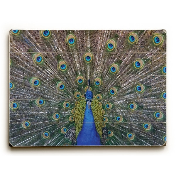 Peacock - Multi Planked Wood Wall Decor by OBC