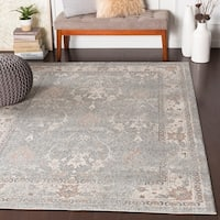 "Alethea Distressed Traditional Medium Grey Area Rug - 7'10"" x 10'3"""
