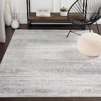 Rachana Distressed Traditional Silver Grey Accent Rug - 2' X 3'