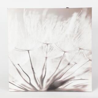 Set of 3 Dandelion Prints with LED Lights - Grey/White