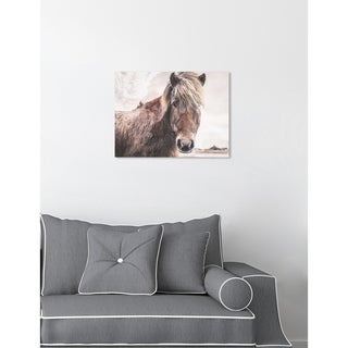 Oliver Gal 'Horse In The Wind' Animals Wall Art Canvas Print - Brown, White