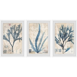 Marmont Hill - Handmade Seaweed Arrangement Triptych