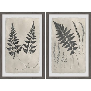 Vintage Fern Study Diptych - Multi-color