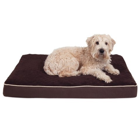 Aspen Pet Orthopedic Dog Bed