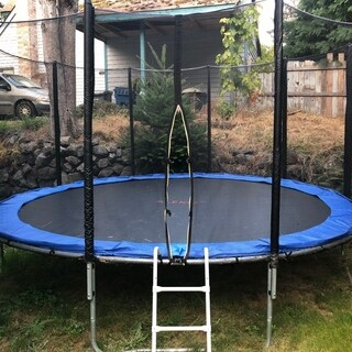 ALEKO Trampoline 10 feet With Safety Net and Ladder Black and Blue