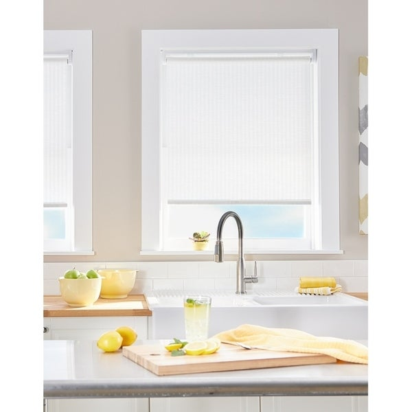 Palm Light Filtering Roller Shade. Opens flyout.