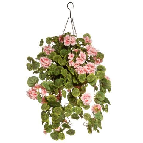 """11"""" Geranium Hanging Basket"""