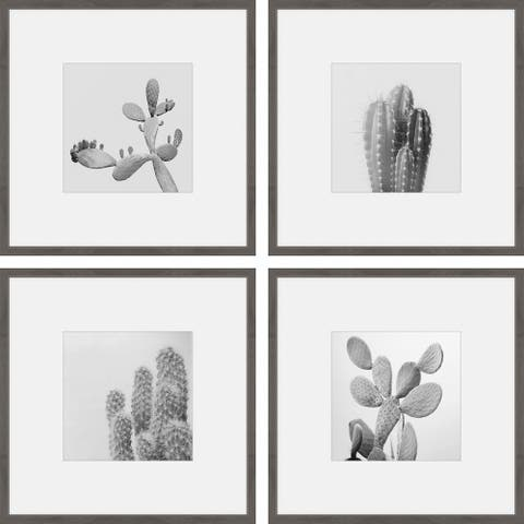 Marmont Hill - Handmade Cacti Types Quadriptych - Multi-color