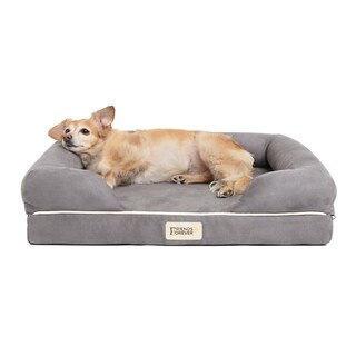 Friends Forever Hastings Pet Couch with Solid Memory Foam 2 - Color Option