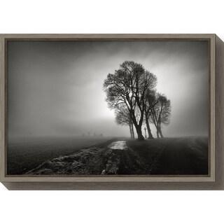 Canvas Art Framed 'Fog' by Arnaud Maupetit