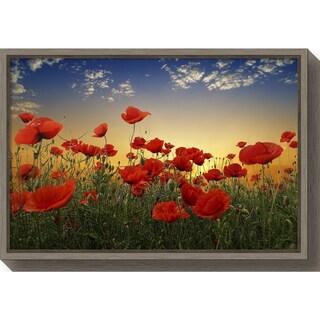 Canvas Art Framed 'Poppies' by Albena Markova