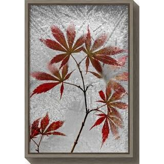 Canvas Art Framed 'red maple' by Secundino Losada - 16 x 23.5