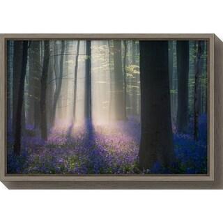 Canvas Art Framed 'Velvet Light' by Adrian Popan