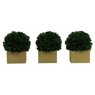 Faux Preserved Artificial Boxwood Ball Topiary Plant In Pot, Set of 3
