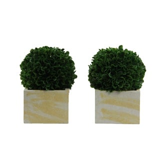 Faux Preserved Artificial Boxwood Ball Topiary Plant In Pot, Set of 2