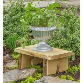 2 ft. Decorative Bench in Live Edge Locust Wood
