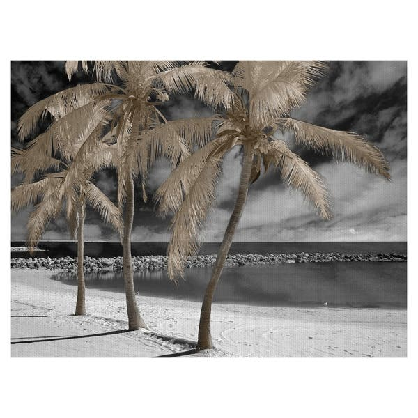 Fantasy Island Palm Trees By Mike Jones Wrapped Canvas Photo Art Print On Sale Overstock 22736329