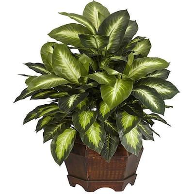 Golden Dieffenbachia Silk Plant - Green