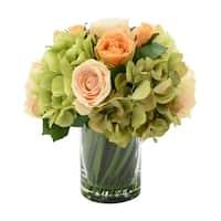 Peach Roses and Green Hydrangea