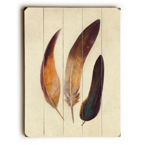 Three Feathers - Multi Planked Wood Wall Decor by Terry Fan