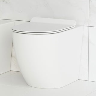 Astounding St Tropez Back To Wall Concealed Tank Toilet Bowl Overstock Com Shopping The Best Deals On Toilets Creativecarmelina Interior Chair Design Creativecarmelinacom