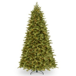 9 ft. PowerConnect(TM) Princeton Fraser Fir with Dual Color® LED Lights
