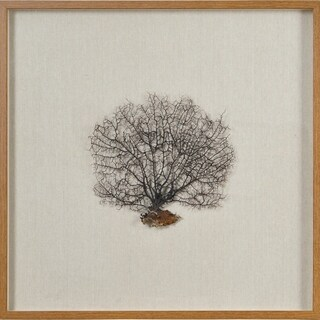 Renwil Gorgon Square Brown Framed Sea Fan and Wood Wall Art