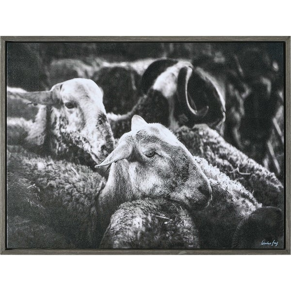 Strick & Bolton Framed Black/ White Canvas Wall Art